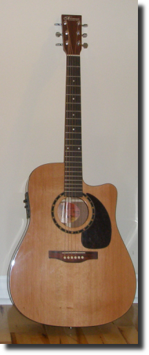 Norman ST40 semi-acoustic cutaway